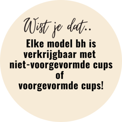 bh-model-advies